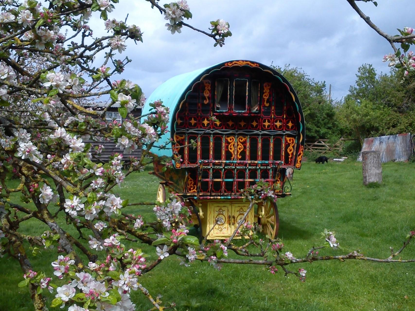 Gypsy Caravan Breaks Stay And Relax In A Beautiful Gypsy